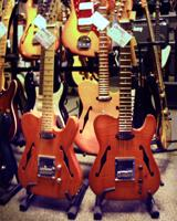 Charlee Guitars